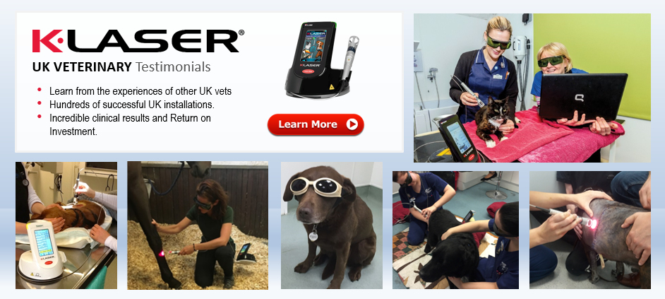 K Laser Class4 Laser Therapy Home Setting The Standard